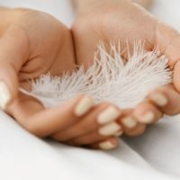Softness Concept. Closeup Of Beautiful Woman's Hands With Healthy Soft Skin Holding Light White Feather. Health And Body Care Concepts.